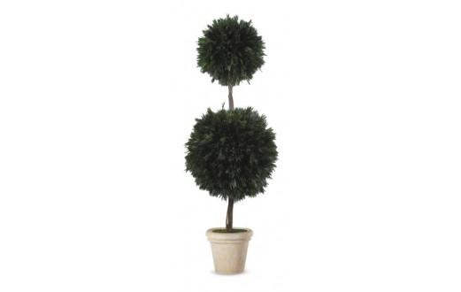 Salignum 2 ball tree